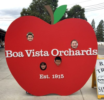 Boa Vista Orchards Great Photo Op