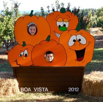 Boa Vista Photo Stop