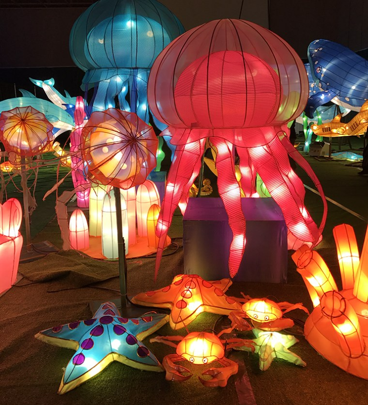 Jellyfish Lantern Display