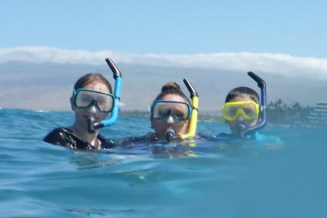 Snorkeling at the Public Beach in Mauni Lani Bay