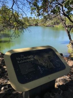 Kalahuipua'a Historic Park Hawaiian Fish Ponds