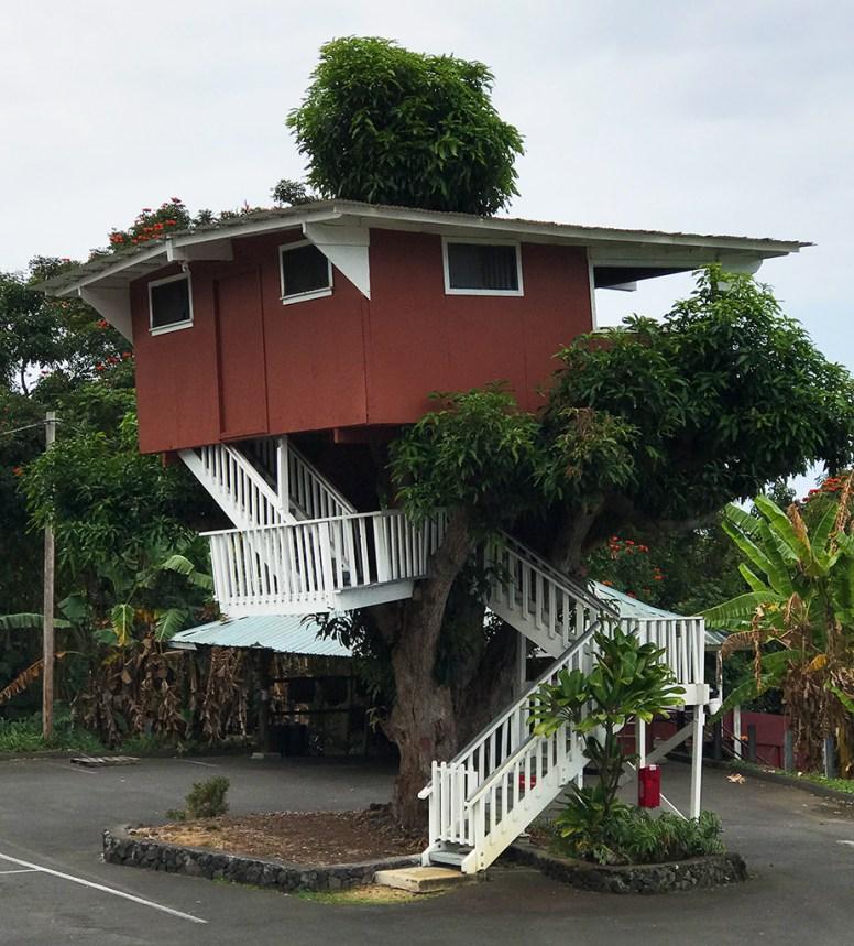 Kona Tree House