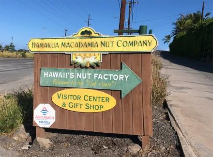 Macadamia Nut Company Tour