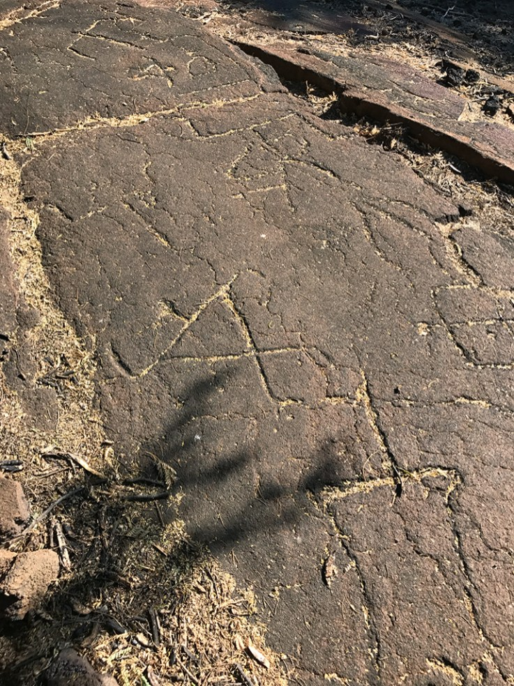 Puako Petroglyphs on the Big Island of Hawaii With 3,000 designs identified
