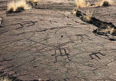 Tour the Puako Petroglyph Archaeological District