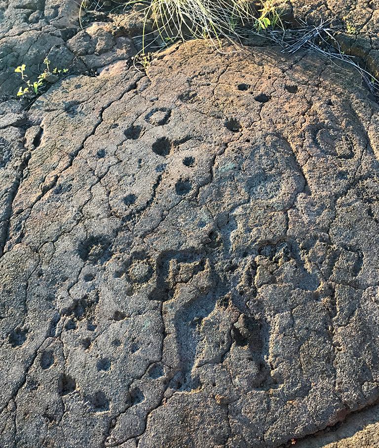 Walk Through Ancient Hawaiian Petroglyphs