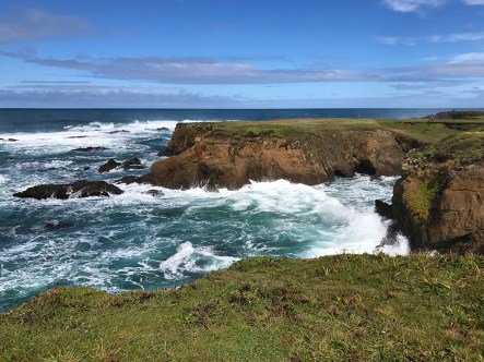Exploring the Noyo Headlands in Fort Bragg