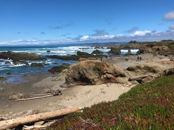 Fort Bragg Beaches near Glass Beach
