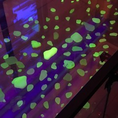 Sea Glass Under Black Light