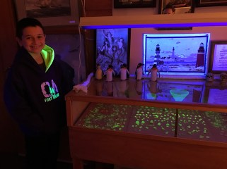Carter Bourn In The Black Light Sea Glass Room