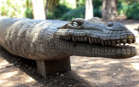 Carved Crocodile Wooden Sculpture