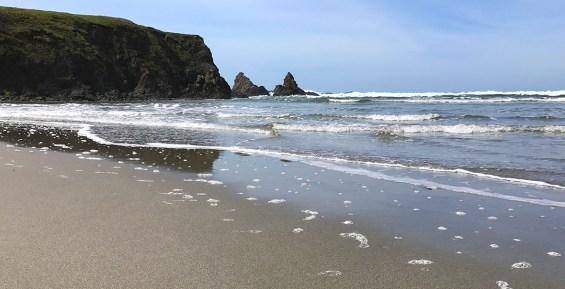 Jug Handle Beach Near Caspar, California