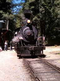 Skunk Train Engine From 2010