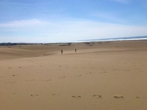 Ten Mile Dunes, Fort Bragg