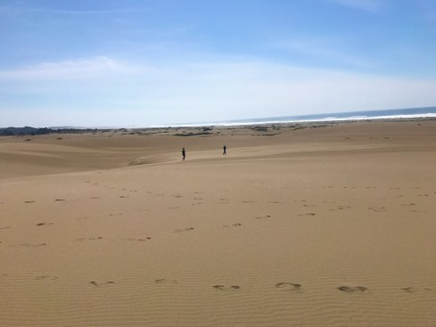 Ten Mile Dunes, Fort Bragg