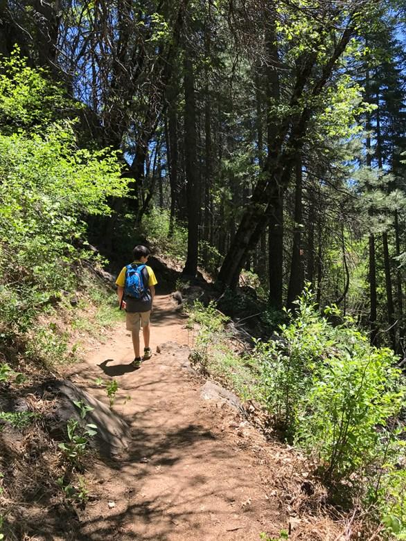 McCloud River Trail to Lakin Dam