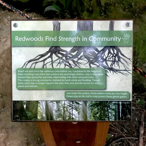 Interpretive and Educational Sign