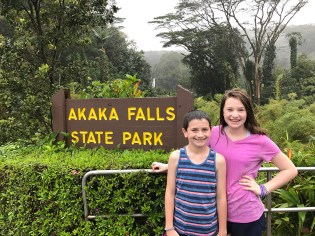 Akaka Falls Hawaii State Park