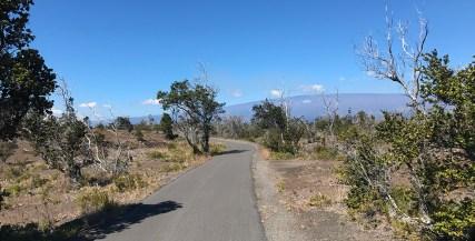 Hilina Pali Road