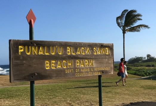 Punalu'u Black Sand Beach Park in Hawaii
