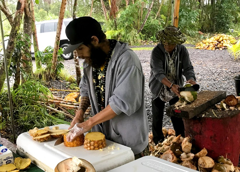 Roadside Farm Stand in Hawaii selling Fresh Pineapple and Coconut