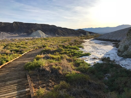 Salt Creek Trail in Death Valley