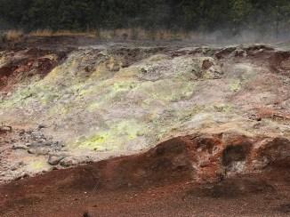 Sulfur Banks in Hawaii