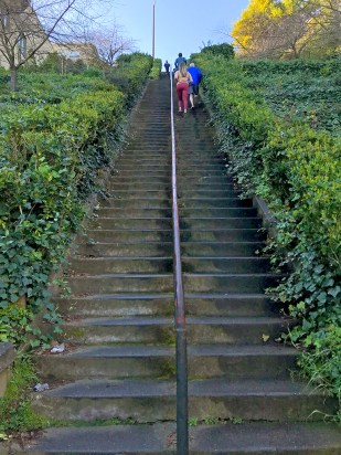 Climbing the Lower Section of Lyon Street Steps in San Francisco