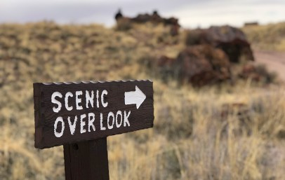 Giant Logs Trail Scenic Overlook Sign