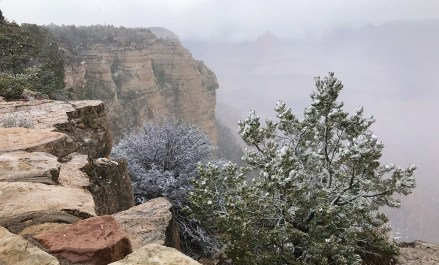 Grand Canyon South Rim Snow