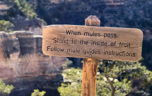 Mule Passing Sign on Bright Angel Trail