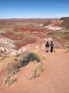 Nizhoni Point in Arizona's Painted Desert-scenic-overlook