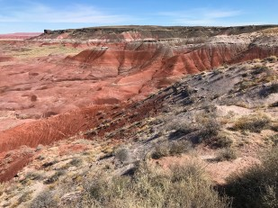 Painted Desert View From Lacey Point