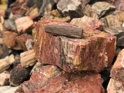 Stacks of Petrified Wood at the Rainbow Rock Shop