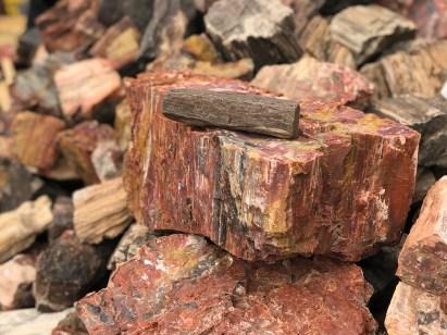 Stacks of Petrified Wood at the Rainbow Rock Shop