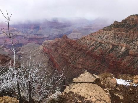 Spring Break Snow At The Grand Canyon