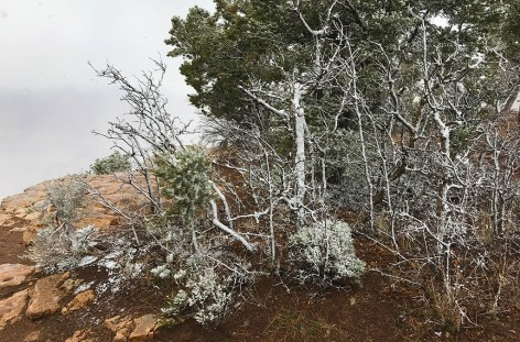 Spring Break Snowstorm at Grand Canyon National park