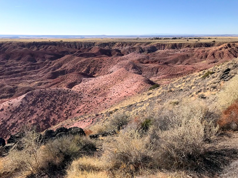 Tawa Point at the Painted Desert