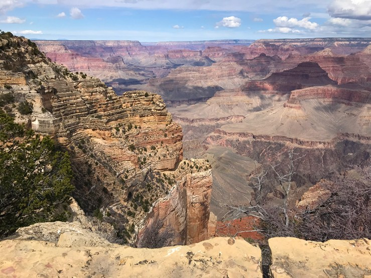View Of Grand Canyon From Powell Point Overlook