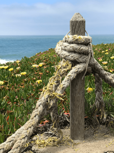 Old Lighthouse Ropes