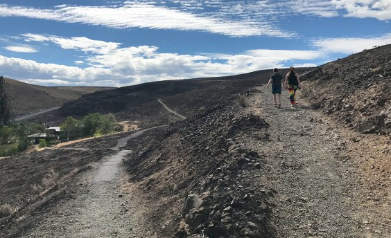Carter and Natalie Bourn walking the trail at the Ginko Petrified Forest State Park in Vantage, Washington