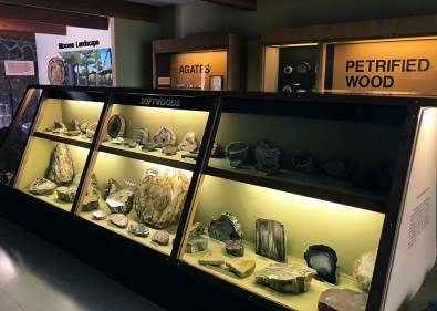 Petrified Wood Exhibit at the Ginko Petrified Forest Visitor Center