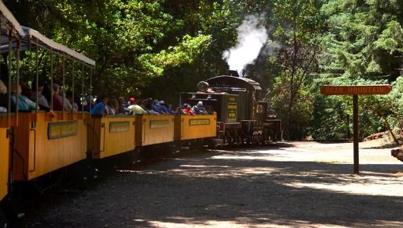 Roaring Camp Train Rides In The Santa Cruz Mountains