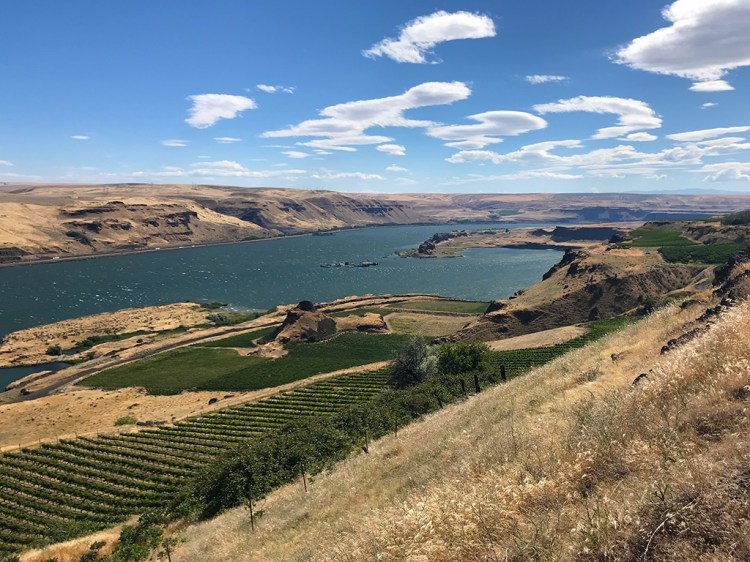 View of the Columbia River Gorge from the Maryhill Museum Of Art