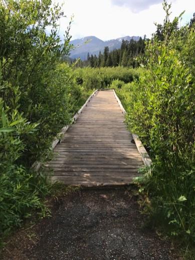 Beaver Ponds Boardwalk