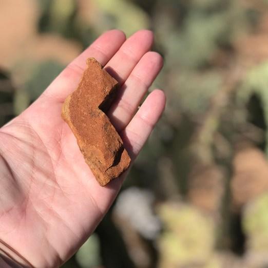 California Rock Found At Sus Picnic Area at Saguaro National Park