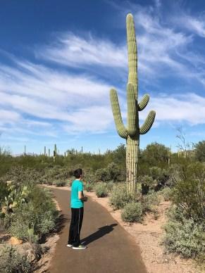 Carter Bourn Looking at a Giant Saguaro Cactus