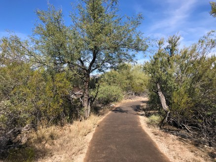 Desert Ecology Trail at Saguaro East