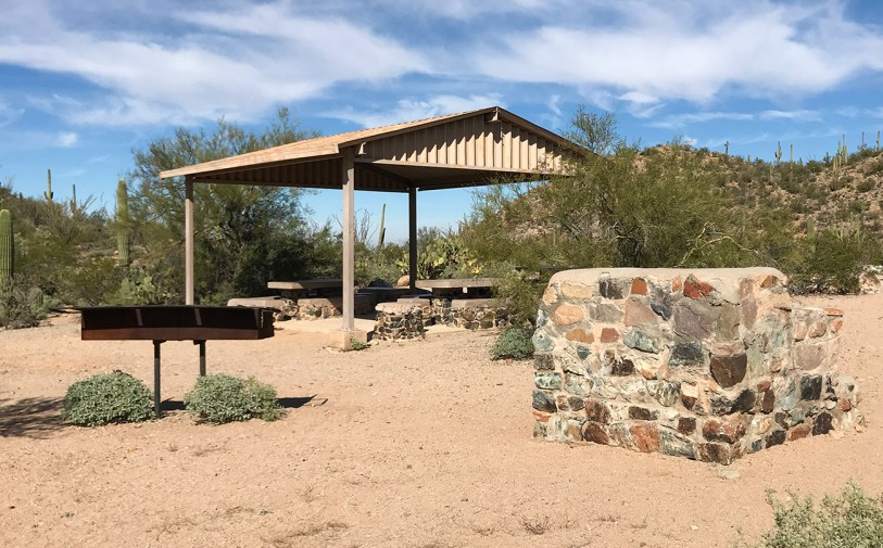 Sus Picnic Area at Saguaro National Park
