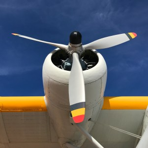 Airplane Propellor